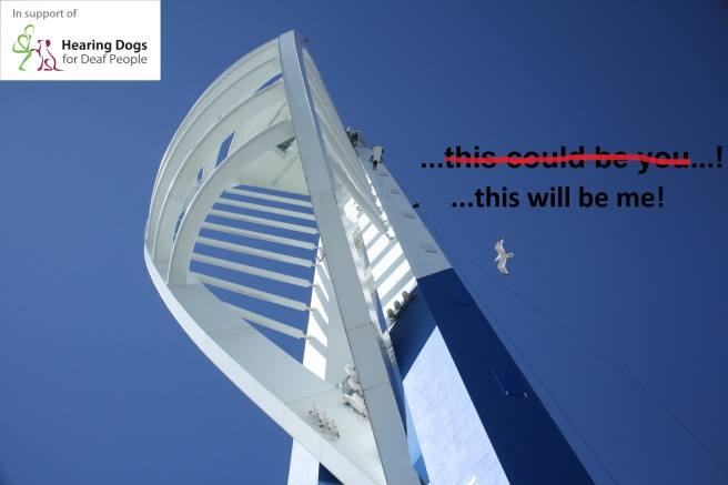 Abseil This Will Be Me!